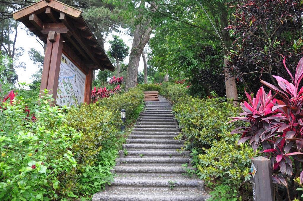 龍過脈森林步道主照片