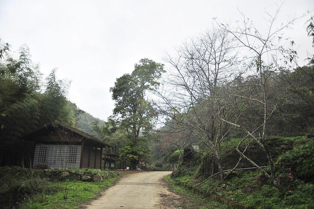 石壁山嘉南雲峰步道主照片