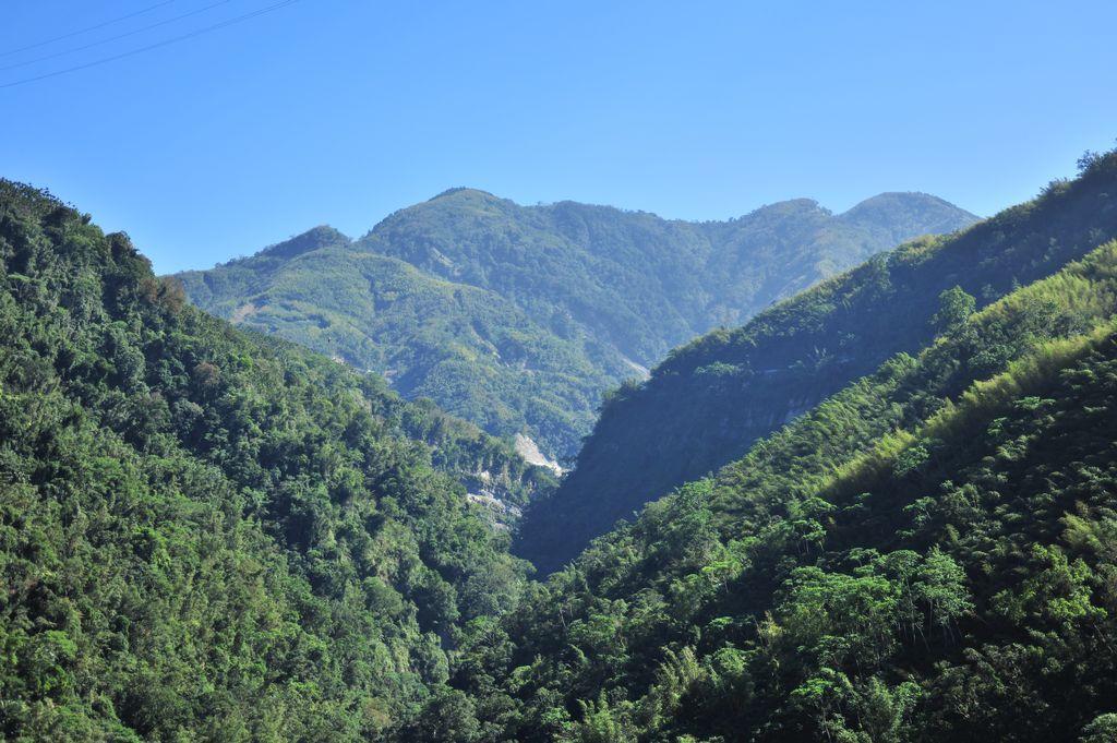 瑞里風景區主照片