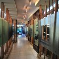 瑞太遊客服務中心、野薑花溪步道-瑞太遊客服務中心、野薑花溪步道照片