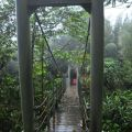 蓮心池吊橋(石壁仙谷中)