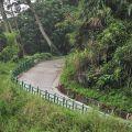 蓬萊瀑布 & 步道-步道2照片