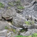 蓬萊瀑布 & 步道-溪谷景觀照片