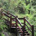 蓬萊瀑布 & 步道-木棧道1照片