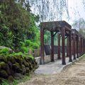 雲林文學步道(華山文學步道)-文學步道(華山文學步道)照片