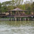 天鵝湖環保水上公園(埤寮埤)-天鵝湖環保水上公園(埤寮埤)照片