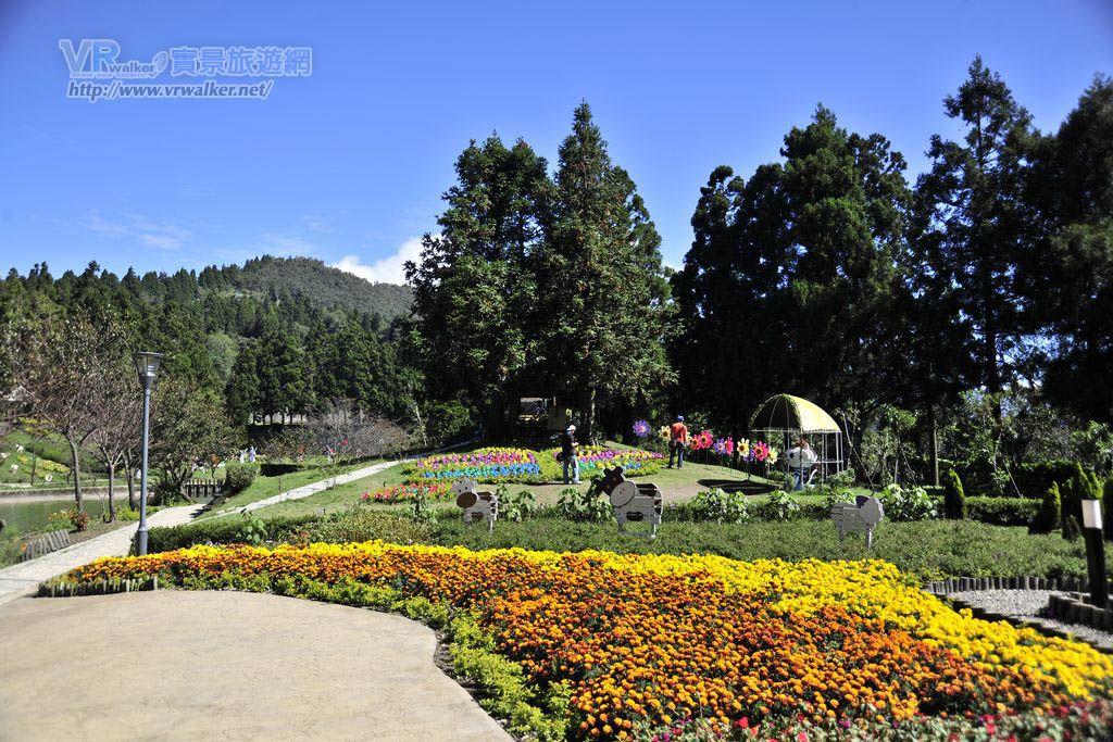 清境小瑞士花園(思源池)主照片
