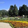 清境小瑞士花園(思源池)照片