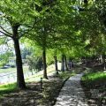 清境小瑞士花園(思源池)-清境小瑞士花園(思源池)照片