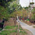 大崗山生態園區