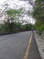 柴山自然公園(壽山)-柴山大路照片