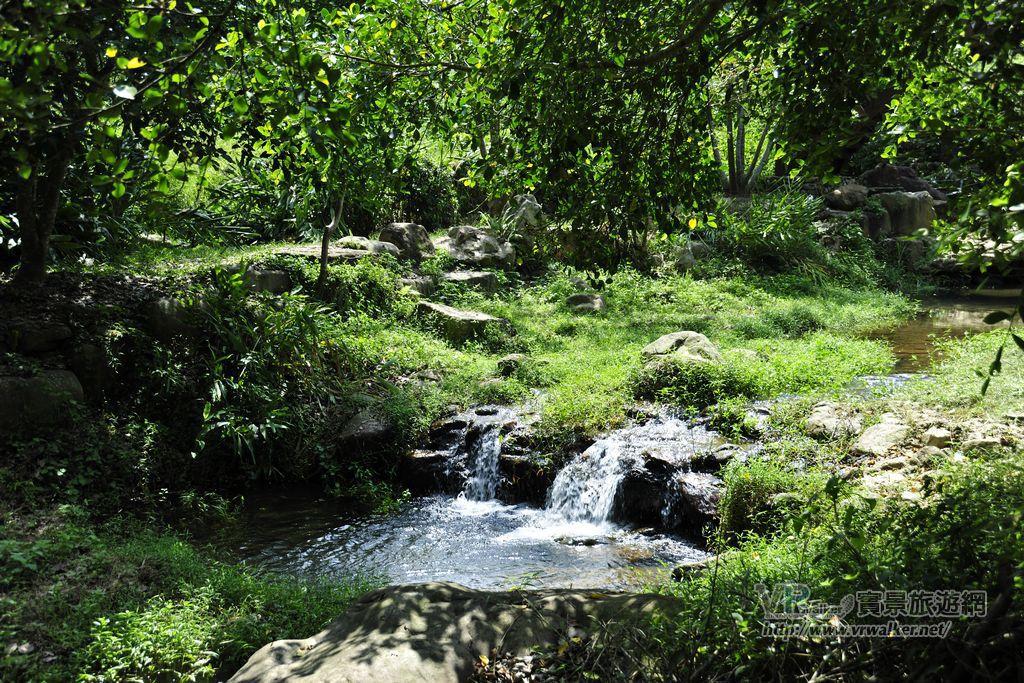 茅埔坑溼地(茅埔坑生態公園, 茅埔坑生態池)主照片