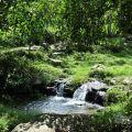 茅埔坑溼地(茅埔坑生態公園, 茅埔坑生態池)