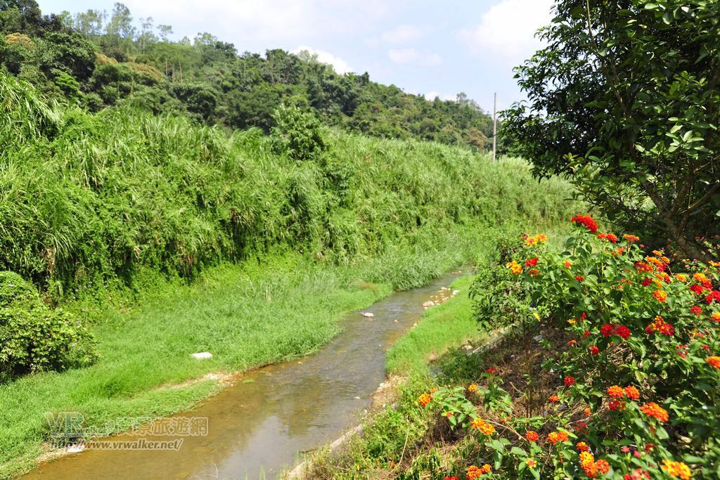 桃米坑溪河濱步道主照片