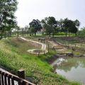 蔴荳古港文化園區(麻豆港(水堀頭)史蹟公園)照片