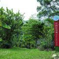 桃米生態村-中路坑濕地1照片