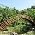 桃米生態村-茅埔坑溪親水公園3照片