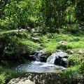 桃米生態村-茅埔坑溪親水公園1照片