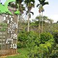 桃米生態村-草湳濕地農場1照片