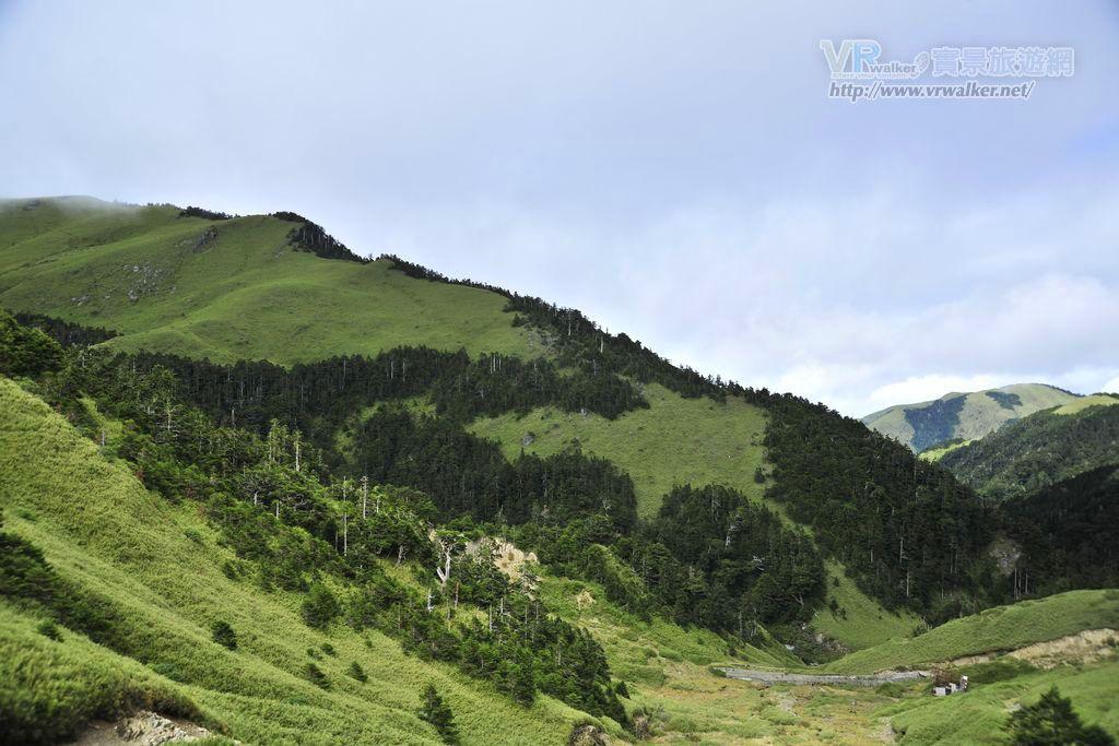 合歡山森林遊樂區主照片