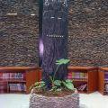 泰武鄉立圖書文物館-泰武鄉立圖書文物館照片