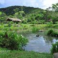 佳德谷原住民植物生活教育園區照片