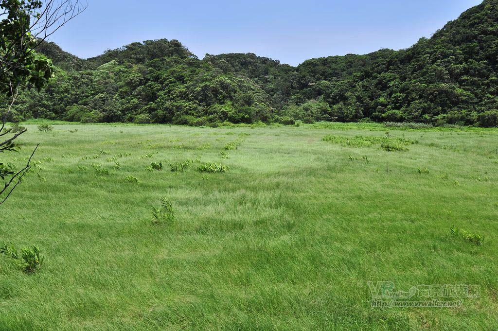水上草原主照片
