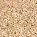 星砂灣(後壁湖海洋資源保護示範區)-星砂灣(後壁湖海洋資源保護示範區)照片