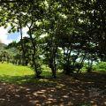 港口溪漁村公園-港口溪口漁村公園照片