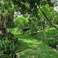 保力生態休閒農場(保力林場)-保力生態休閒農場(保力林場)照片