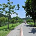 梅花湖風景區-梅花湖風景區照片