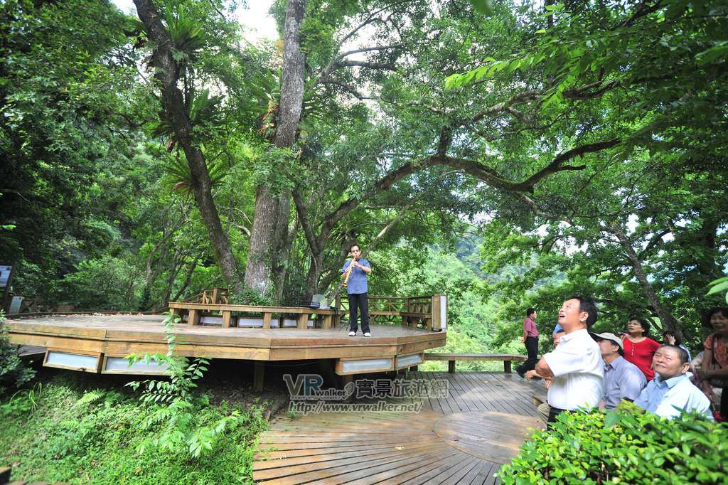 棲蘭國家森林遊樂區主照片