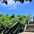 小灣海水浴場-小灣海水浴場照片