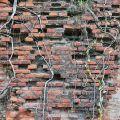 安平古堡-王城牆體照片