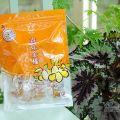 橘之鄉蜜餞形象館-橘之鄉蜜餞形象館照片