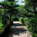 蘭科植物園-台南市 蘭科植物園照片