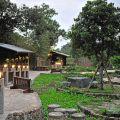 礁溪溫泉公園(森林風呂)-礁溪溫泉公園(森林風呂)照片