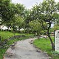 羅東運動公園-羅東運動公園照片