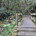 迷糊步道(米洋溪步道)-迷糊步道(米洋溪步道)照片