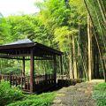 奮起湖日本神社遺址-奮起湖日本神社遺址照片