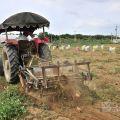 太康有機農業專區(太康有機農場)