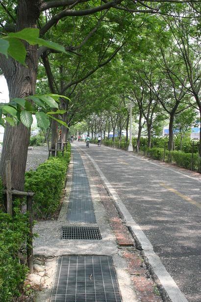 東豐自行車綠廊(東豐鐵路自行車道)主照片
