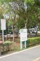 東豐自行車綠廊(東豐鐵路自行車道)- 照片