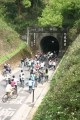 后豐鐵馬道(后豐自行車道 )- 照片