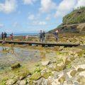 綠島-大白沙潛水區照片