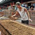 香藝文化園區-香藝文化園區照片
