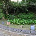 員山公園-員山公園照片