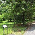 福山植物園-福山植物園照片