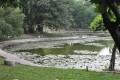 台南公園(舊名中山公園)-台南公園3照片