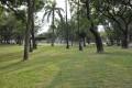 台南公園(舊名中山公園)-台南公園9照片